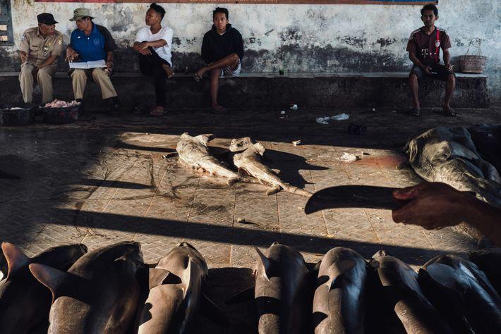 Licitadores, trabalhadores do mercado de peixe, compradores e outros aguardam o início do leilão em Tanjung ...