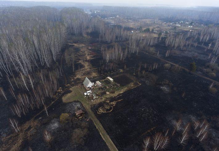 Uma comunidade no sul da Sibéria coberta de cinzas de um dos vários incêndios que lavram ...