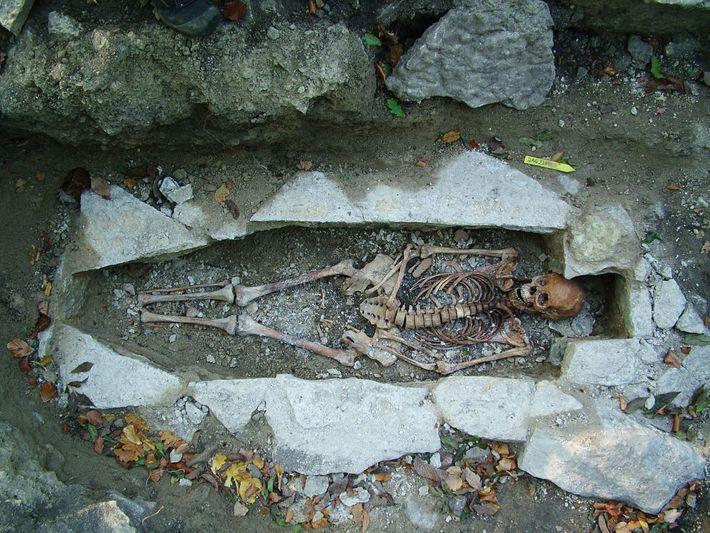 O ADN de um esqueleto feminino chamado Kata, encontrado num cemitério viking em Varnhem, na Suécia, ...
