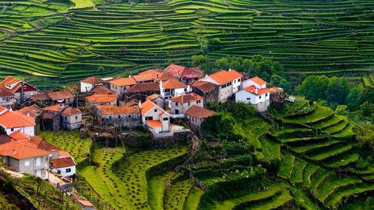 A aldeia de Sistelo situa-se no norte do concelho de Arcos de Valdevez, nos limites do ...