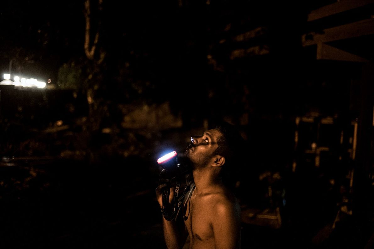 Um trabalhador na cidade de Paramaribo acende a lanterna para mostrar a Monique Pool uma preguiça ...