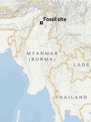 Local onde foi descoberto o fóssil.