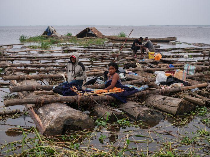 loggers-congo-river