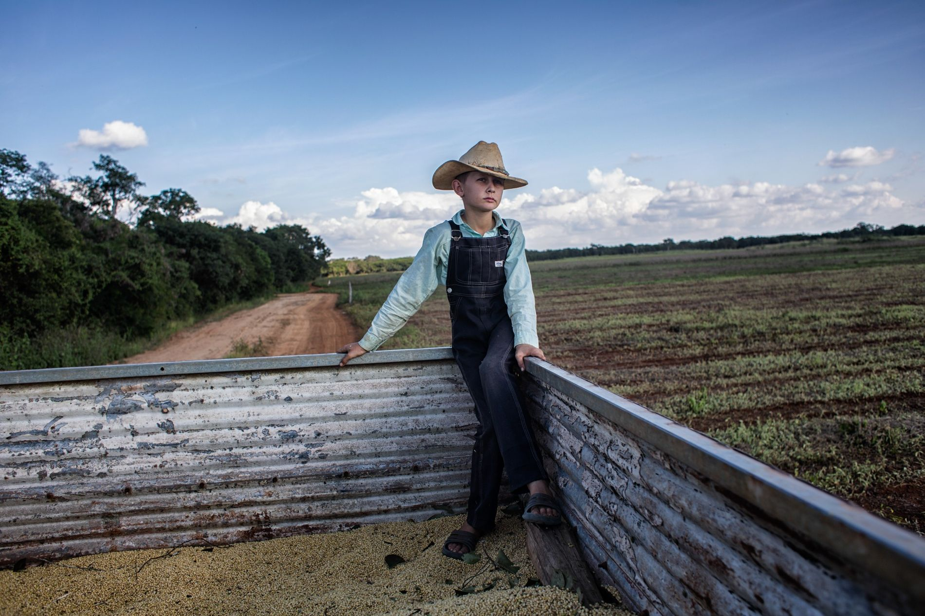 Peter Peter, 10 anos, viaja no camião de soja do seu pai, no acampamento menonista de ...