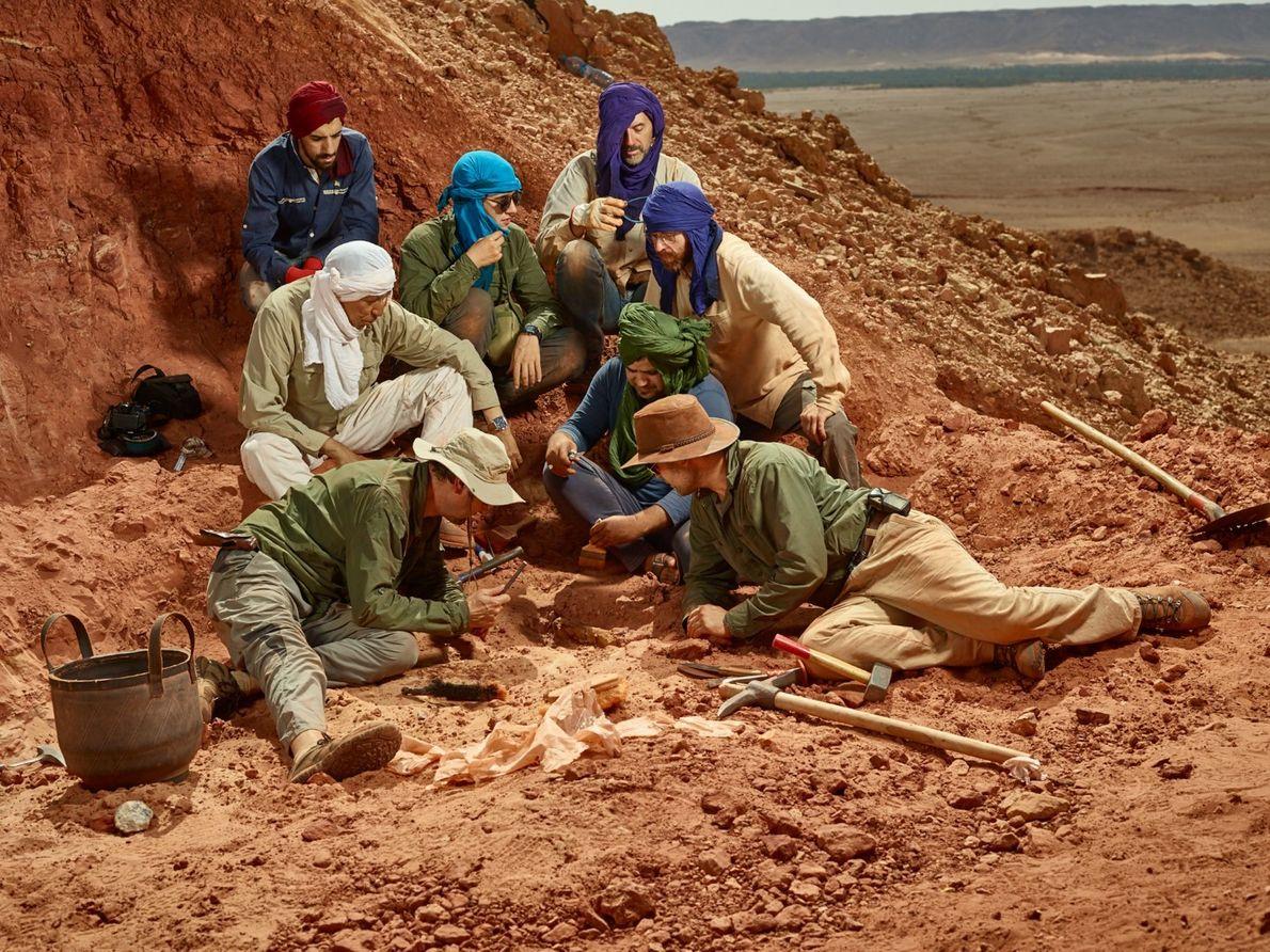 O núcleo da equipa de investigação reunido em torno de um osso de espinossauro recém-descoberto. A ...