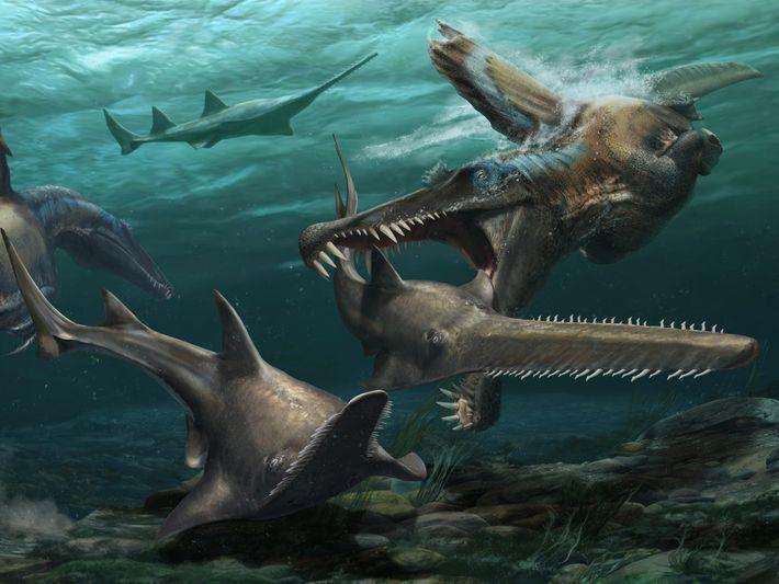 As recentes e inéditas descobertas feitas em Marrocos fornecem evidências de que o espinossauro passava grande ...