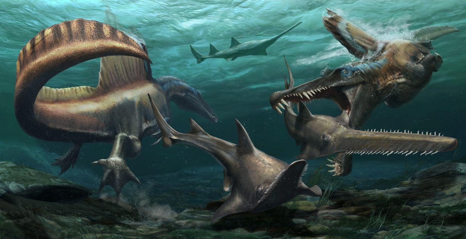Espinossauro Bizarro Faz História Enquanto Primeiro Dinossauro Nadador de que Há Conhecimento