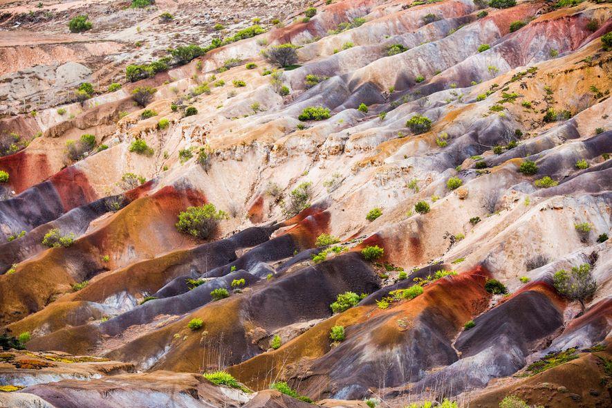 Os solos coloridos do Vale Fisher revelam as origens vulcânicas de Santa Helena.