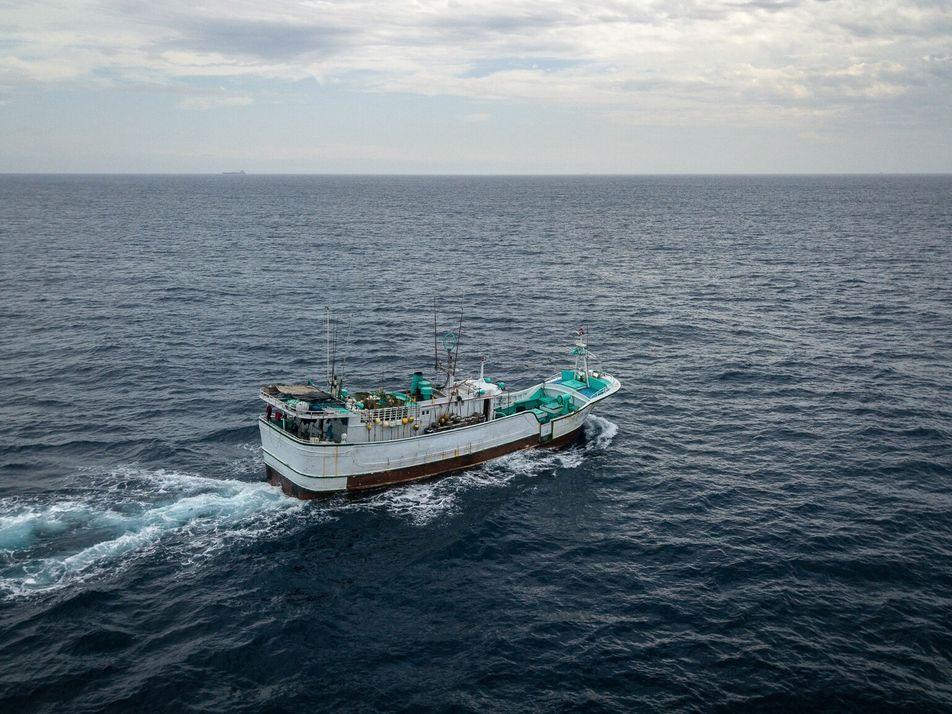 Crimes de Vida Selvagem e Abusos dos Direitos Humanos nos Navios de Pesca de Taiwan