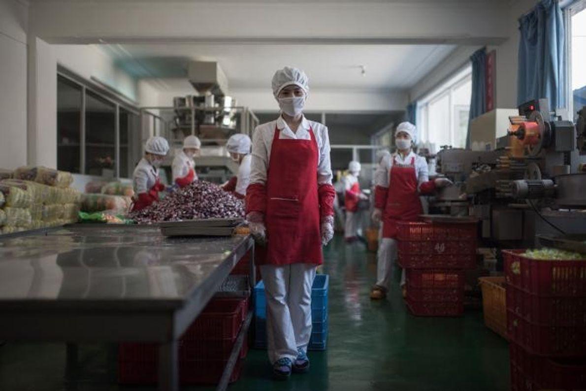 Hong Kum Ju, de 27 anos, posa na fábrica de produtos alimentares onde trabalha.