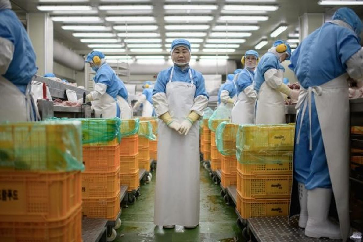 Kim Si-eun, de 49 anos, posa no corredor da fábrica Spam, onde trabalha em Jincheon.