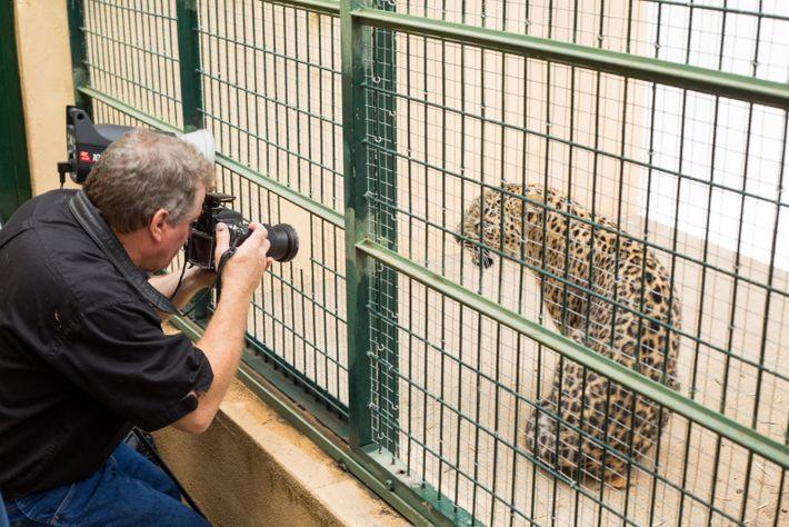 Nos Bastidores da Sessão Fotográfica de Joel Sartore no Jardim Zoológico