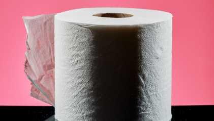 Como se Fazia Antes de Existir Papel Higiénico?