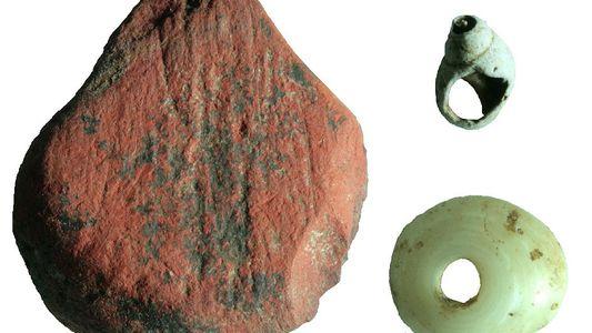 Ferramentas da Antiguidade Mostram Como os Humanos se Adaptaram às Florestas Tropicais