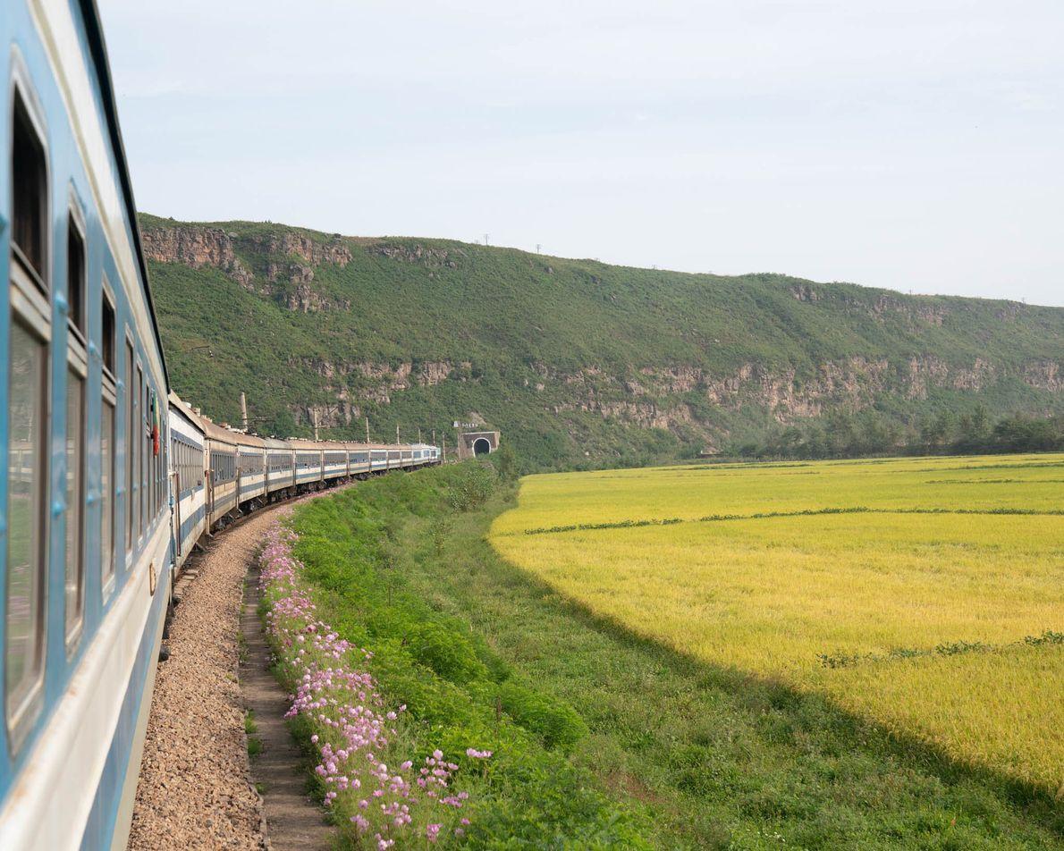 O comboio para Rason atravessa campos verdejantes.