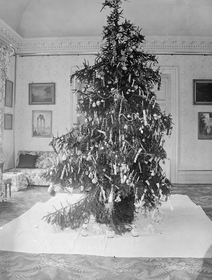 Fotografia de 1900 de uma árvore de Natal decorada com velas