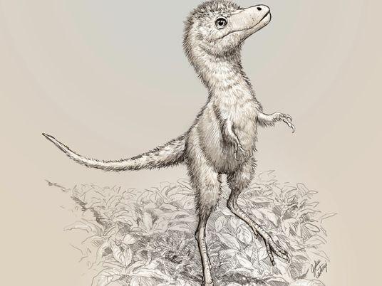 Revelados os Primeiros Fósseis de Embriões de Tiranossauro