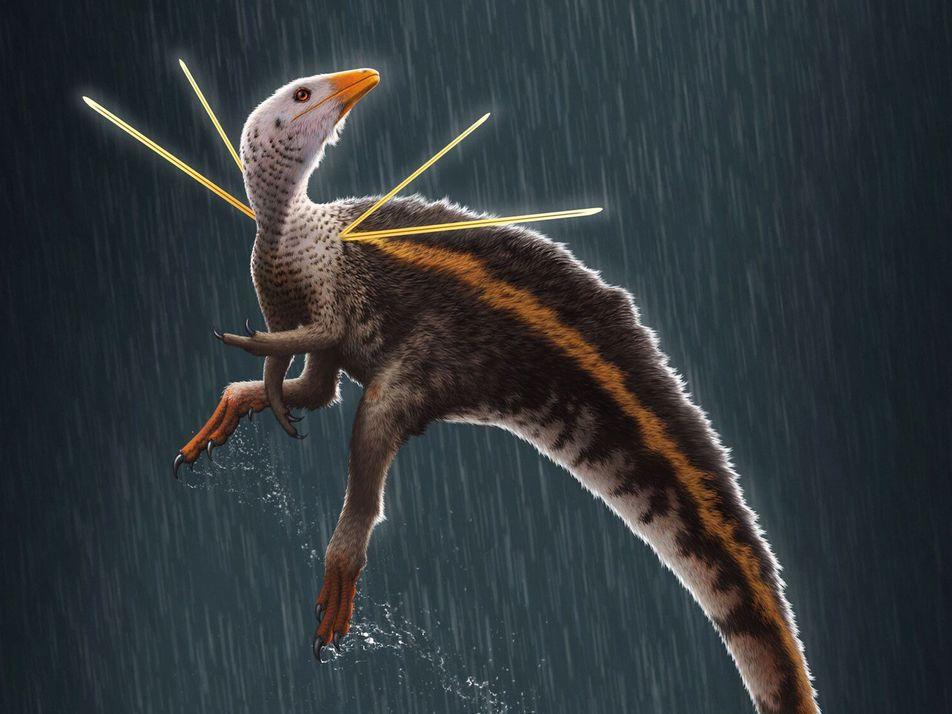Dinossauro Único Exportado do Brasil Gera Controvérsia