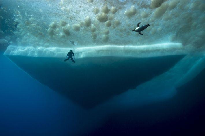 debaixo antartida 1