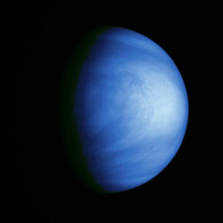 Esta fotografia colorida de Vénus foi captada no dia 14 de fevereiro de 1990 pela sonda ...