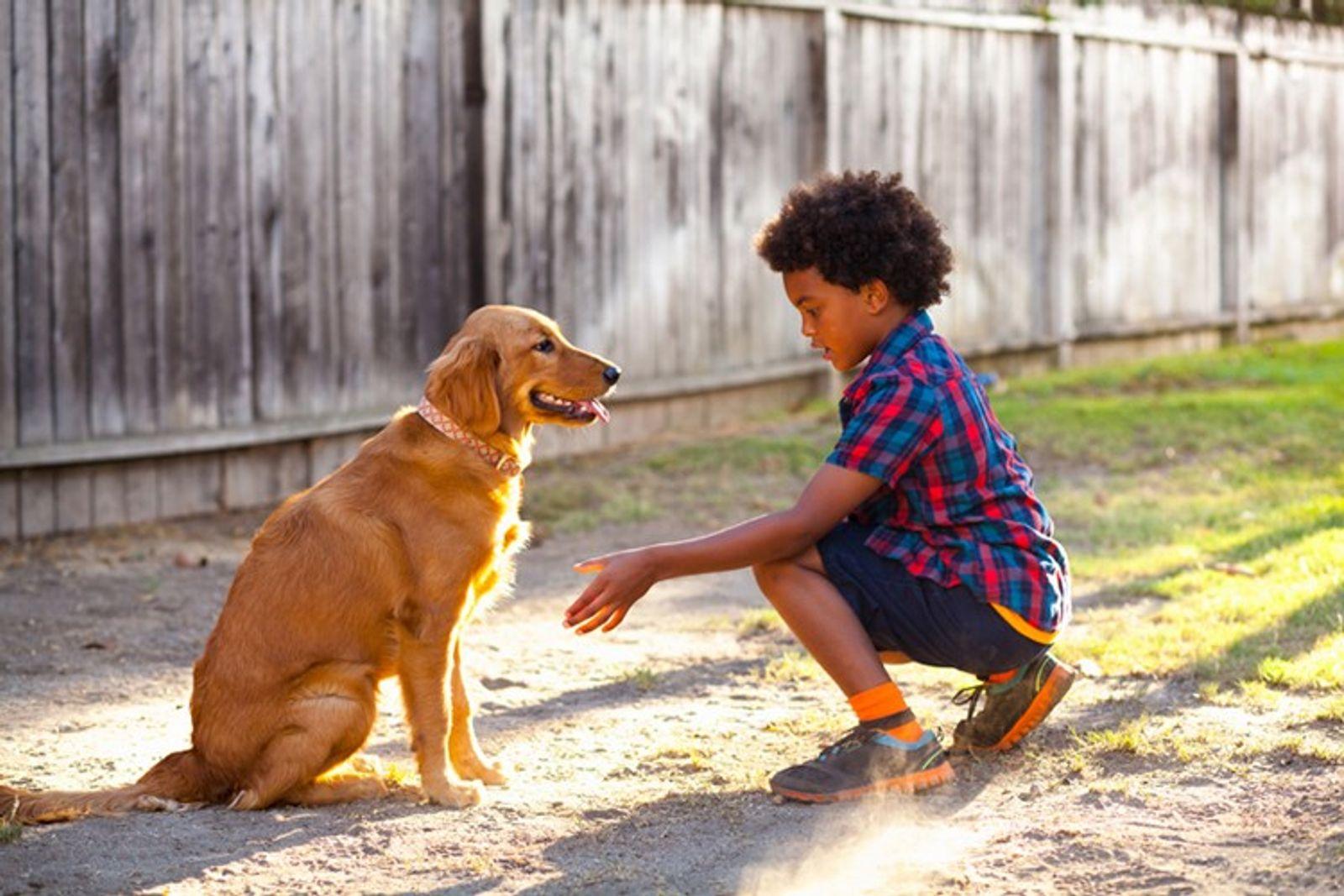 Eis Como as Crianças Podem Fazer Voluntariado, Mesmo a Partir de Casa