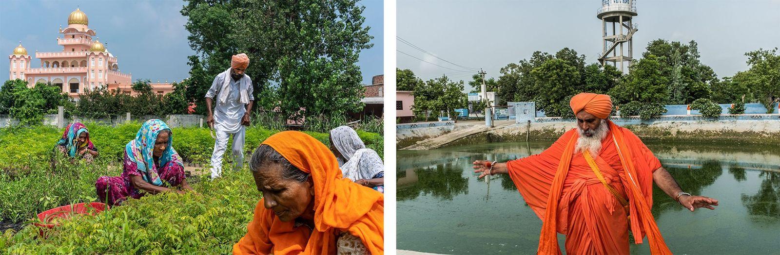 ÍNDIA Esquerda: Neste viveiro em Sichewali, no Punjab, são cultivadas plantas autóctones que tornam a paisagem mais ...