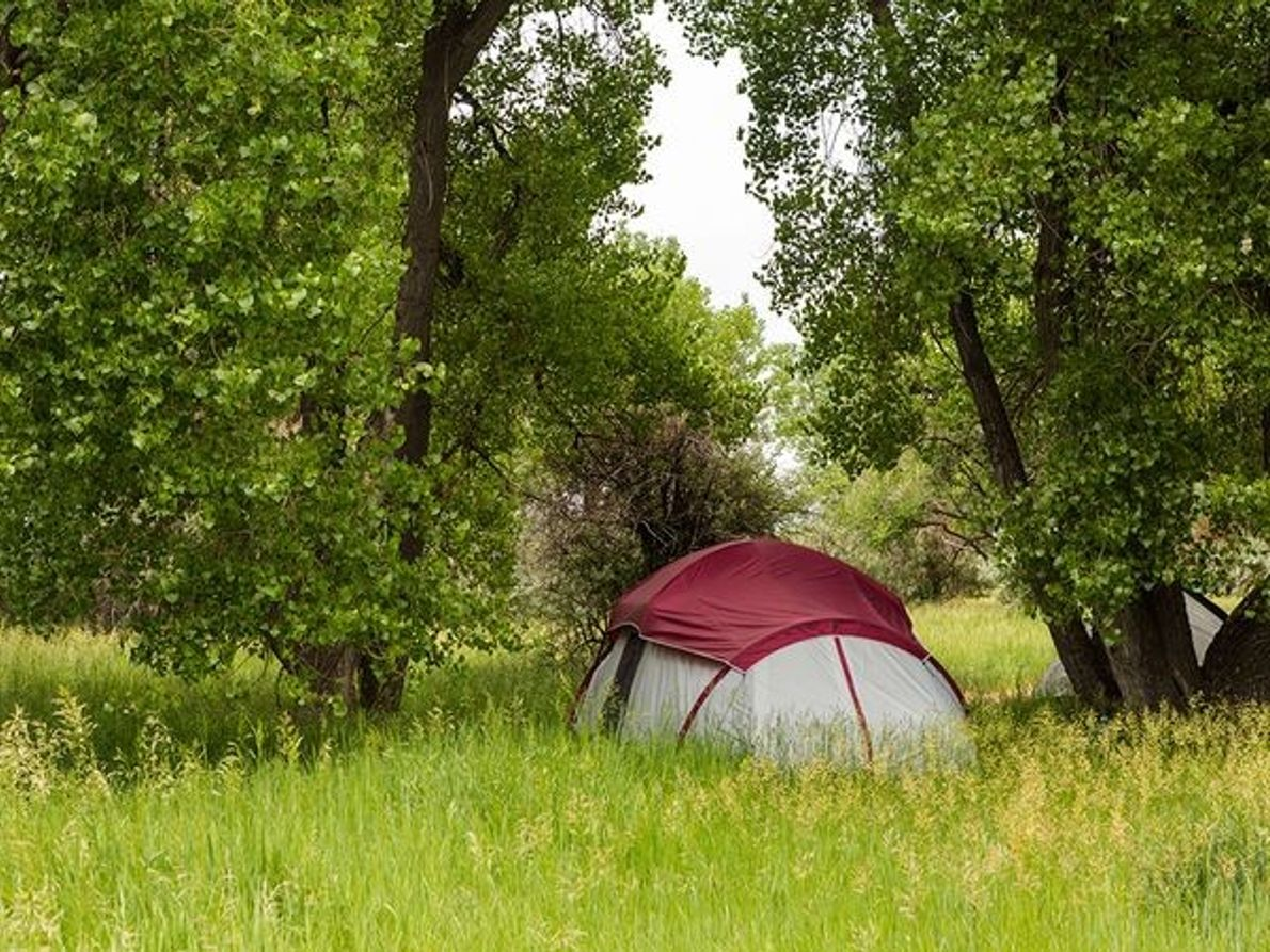 Fotografia de pessoas a acampar em Cherry Creek State Park, Colorado.