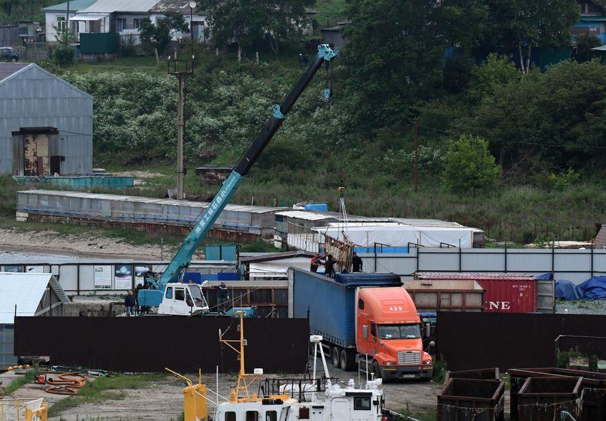 Uma orca a ser levada para um camião de transporte. A viagem, feita de camião e ...