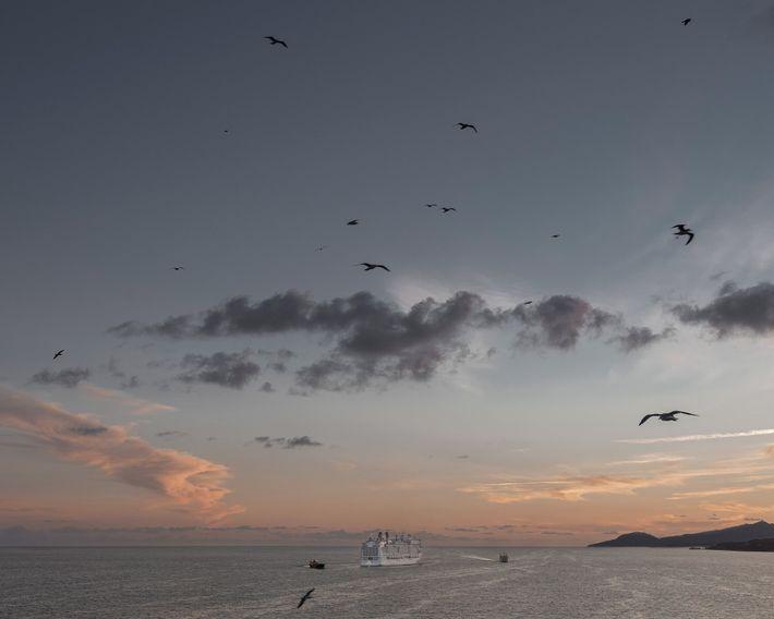 Gaivotas agraciavam o horizonte quando o MSC Grandiosa zarpou do porto de Nápoles, Itália, em outubro ...